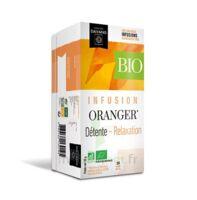 Dayang Oranger Bio 20 Infusettes à ARGENTEUIL