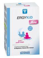 Ergykid Mag Poudre Solution Buvable 14 Sachets à ARGENTEUIL