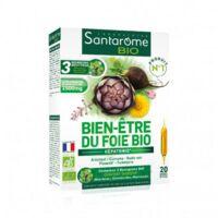 Santarome Bio Bien-être Du Foie Solution Buvable 20 Ampoules/10ml à ARGENTEUIL