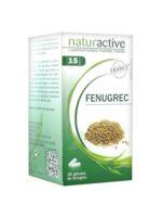 Naturactive Gelule Fenugrec, Bt 30 à ARGENTEUIL