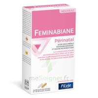 Pileje Feminabiane Périnatal 28 Gélules Blanches Et 28 Gélules Jaunes à ARGENTEUIL