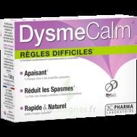 Dysmecalm Comprimés B/15 à ARGENTEUIL