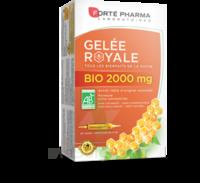 Forte Pharma Gelée Royale Bio 2000 Mg Solution Buvable 20 Ampoules/15ml à ARGENTEUIL