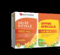 Forte Pharma Gelée Royale 1000 Mg Solution Buvable 2*b/20 Ampoules/10ml à ARGENTEUIL