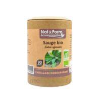 Nat&form Eco Responsable Sauge Bio Gélules B/90 à ARGENTEUIL