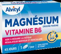 Govital Magnésium Vitamine B6 Comprimés B/45 à ARGENTEUIL
