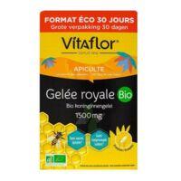 Vitaflor Bio Gelée Royale 1500mg Solution Buvable 30 Ampoules/15ml à ARGENTEUIL