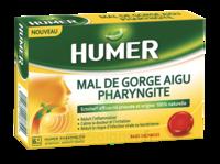 Humer Pharyngite Past Mal De Gorge Baies Sauvages à ARGENTEUIL